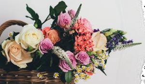 Заказ цветов белгород с доставкой нарцисс цветы купить луганск харьков