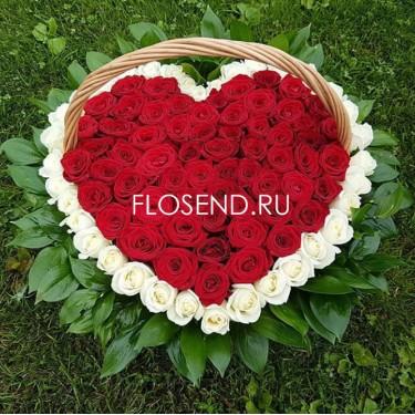 101 красная и белая роза в форме сердца в корзине